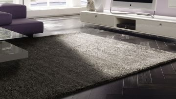 Rugs why you need them?